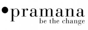 PRAMANA - 06 Consulting
