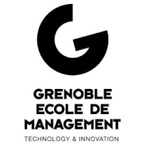 GEM GRENOBLE ECOLE DE MANAGEMENT - 312 Formation